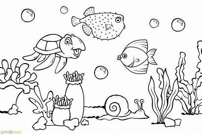 Gambar Laut Mewarnai Pemandangan Ikan Mewarna Untuk