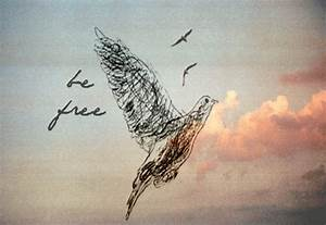 gif drawing art dope birds edit animated clouds freedom ...