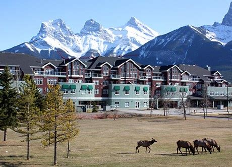 vacancy rates  canmore hit   cent