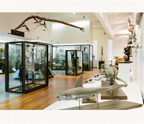 mus 233 um aquarium de nancy le patrimoine lorrain visitez le mus 233 e lorrain 224 nancy