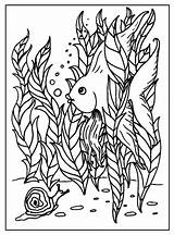 Coloring Pages Fish Intermediate Funny Printable Sheets Colouring Angel Print Angelfish Seaweed Snail Sea Colors Ocean Getcoloringpages Freecoloringpages Julia sketch template