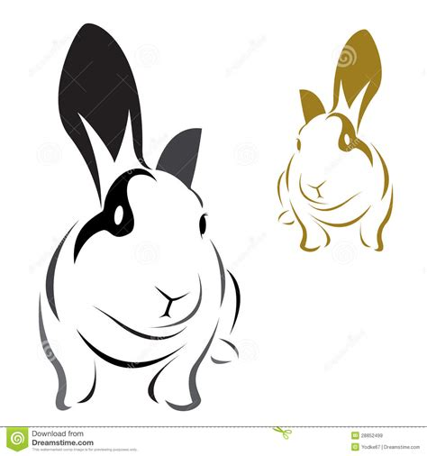 vector image   rabbit royalty  stock images