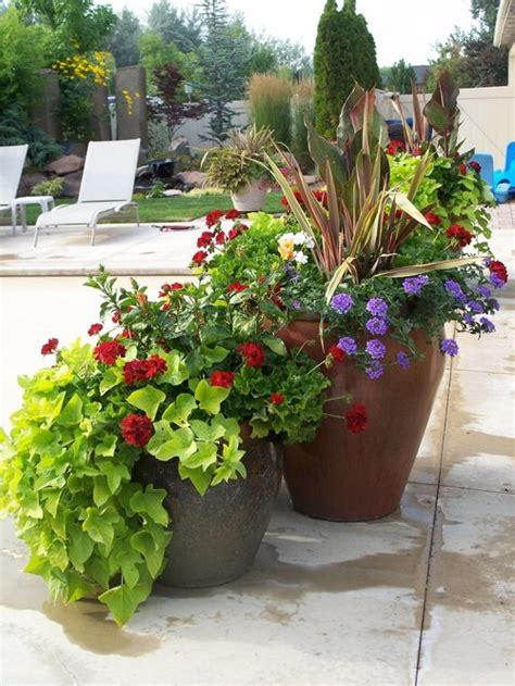 Summer Container Plants Home Design Ideas, Pictures