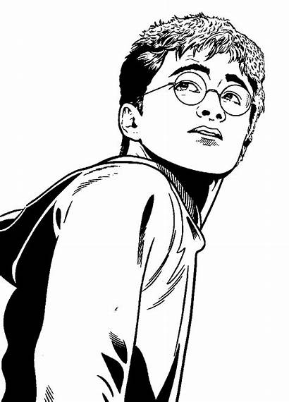 Potter Harry Phoenix Order Fun Coloring Pages