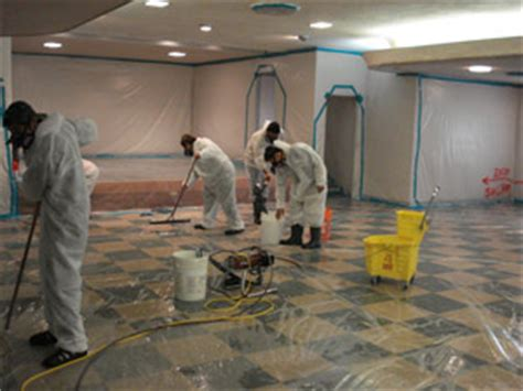 mold remediation jones environmental