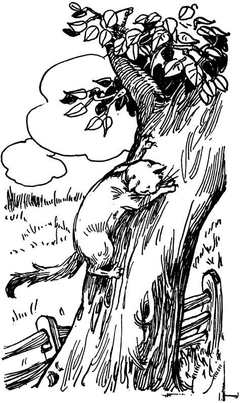 cat climbing  tree clipart