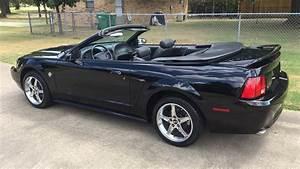 1999 Ford Mustang GT Premium Convertible   T161.1   Dallas 2019