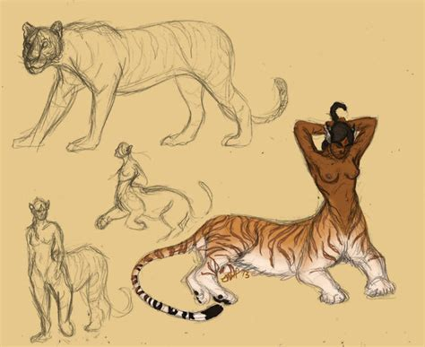 Tiger Centaurs Oh My By Kestrelwings On Deviantart