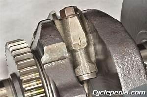Cyclepedia Kawasaki Kle650 Versys Online Motorcycle