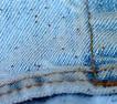 Seed ticks on pants - BugGuide.Net