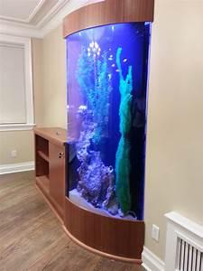 Plexiglas Aquarium Nach Maß : home kings fish tank ~ Watch28wear.com Haus und Dekorationen