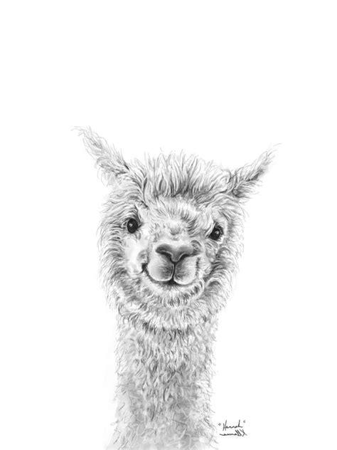 llamas art show  llamas fine art