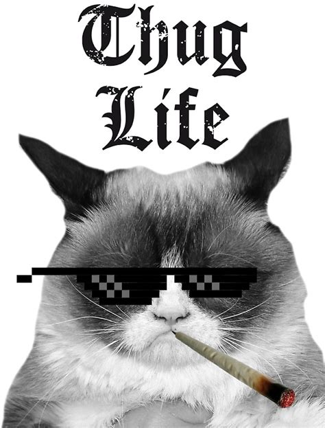 quot thug cat quot stickers by headout redbubble