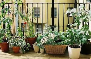 25 coole praktische balkon ideen oase auf dem balkon With balkon ideen kräuter