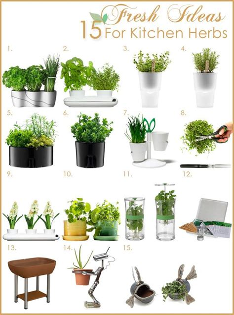 how to create a fresh herb garden in the kitchen
