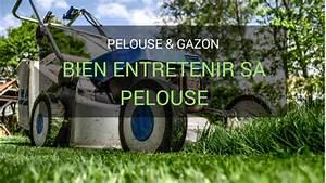 Comment Refaire Sa Pelouse : comment entretenir sa pelouse nos conseils pour un superbe gazon ~ Carolinahurricanesstore.com Idées de Décoration