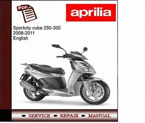 Aprilia Sportcity Cube 250 300 08