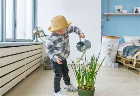 Pflanzen Im Kinderzimmer by Pflanzen Im Kinderzimmer 7 Tipps F 252 R Kleine G 228 Rtner