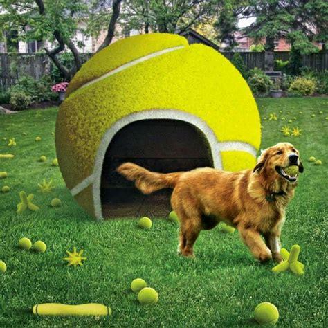 httpsplusgooglecomlowes tennis pinterest dog