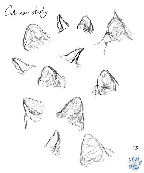 Ear Study Drawing