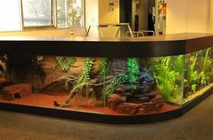Aquarium Supplies & Fish in Melbourne Australia Coburg
