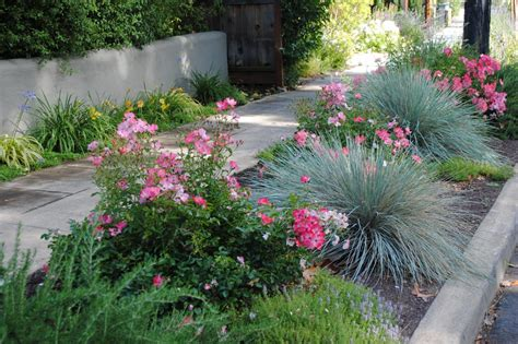 sidewalk landscaping landscaping for sidewalks hgtv