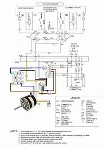 carrier ecm blower motor shapeyourmindscom With ge ecm 2 3 motor wiring diagram