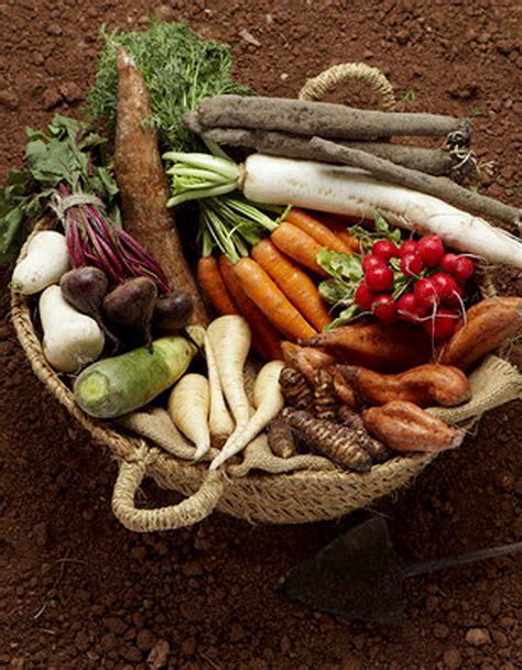 jardiniere cuisine jardinière de légumes en salade pour 4 personnes
