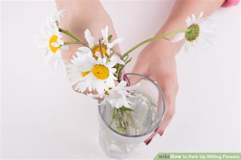 How To Revive Roses In A Vase - 3 ways to perk up wilting flowers wikihow