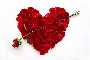 Blume Der Liebe : valentinstag steht vor der t r euroflorist blog ~ Whattoseeinmadrid.com Haus und Dekorationen