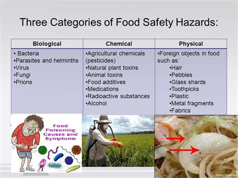 An Overview Of Potential Hazards In Food Service