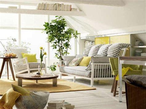 ecovida  plantas  purifican el aire de tu hogar