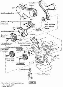 2006 Toyota Camry Water Pump Diagram  2006  Free Engine