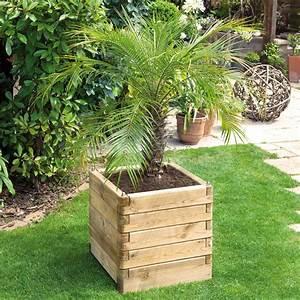 Bac En Bois Pour Plantes : bac fleurs bois trait l50 h50 cm ol a plantes et jardins ~ Dailycaller-alerts.com Idées de Décoration