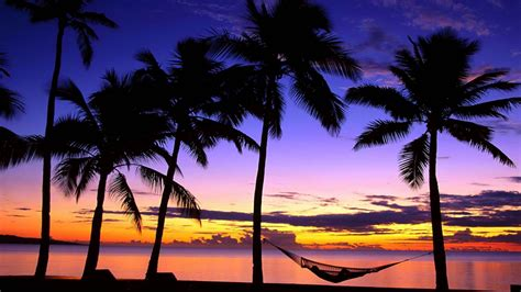 tropical beach sunset hammock wallpapers hd desktop  mobile backgrounds