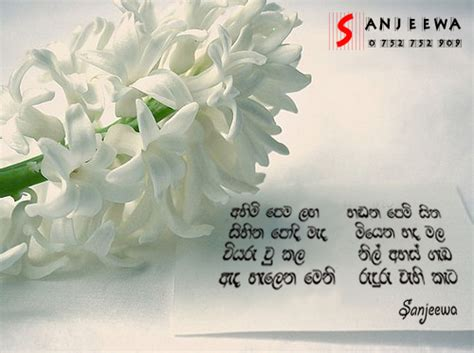 sanjeewa creation lassana nisadas