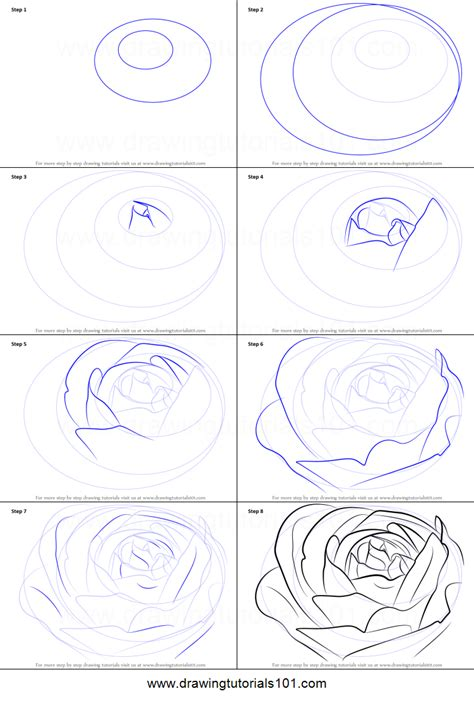 draw  rose bud printable step  step drawing