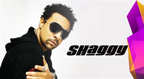 tablette siege auto shaggy