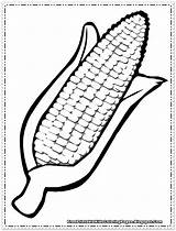 Corn Coloring Pages Printable Cartoon sketch template