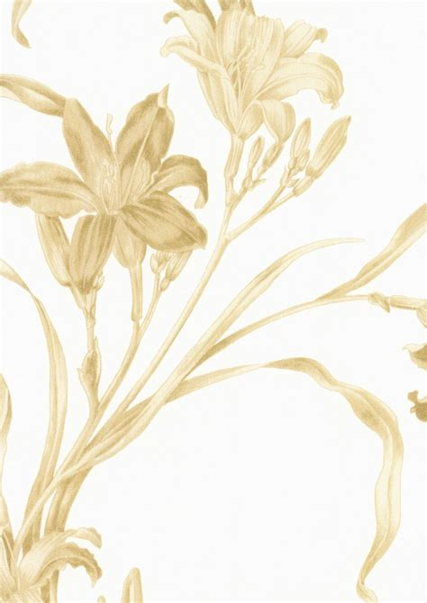 Gold White Background by White And Gold Wallpapers Wallpaper Cave