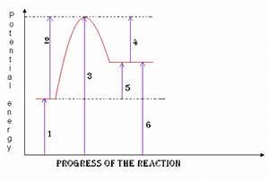 Basics Of Reaction Profiles
