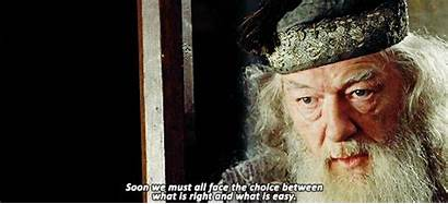 Harry Potter Quotes Dumbledore Quote Gifs Fire