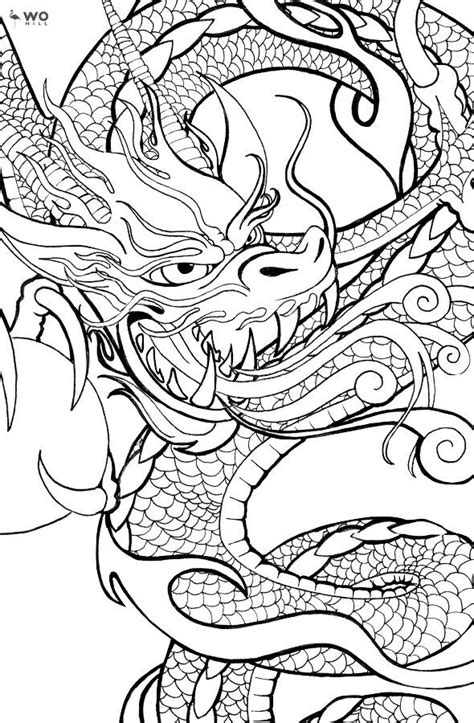 Pin by nancy cramer on coloring pages I love   Dragon tattoo designs, Baby dragon tattoos