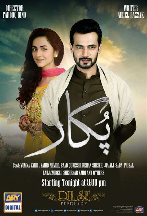 Pukar ARY Zindagi Drama, Cast, Timings, And Schedule