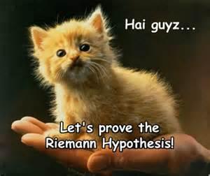 math cats hai guyz math cats math pics math fail