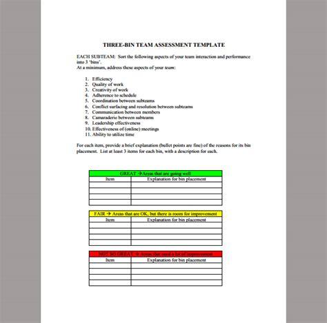 assessment template  team sample  team assessment