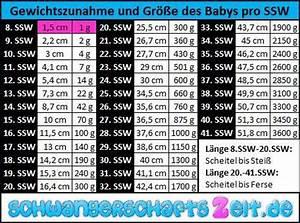 Berechnen Der Ssw : 8 ssw entwicklung gewicht gr e anzeichen symptome ~ Themetempest.com Abrechnung