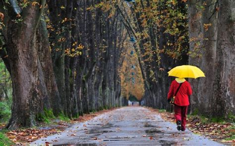 Active Learning Opportunities for a Rainy Day   Get Walkabouts