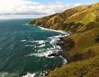 Coromandel Coastal Walkway Tour | The Coromandel