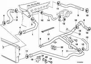 Bmw 528i Hose  Engine  Cooling  Hoses